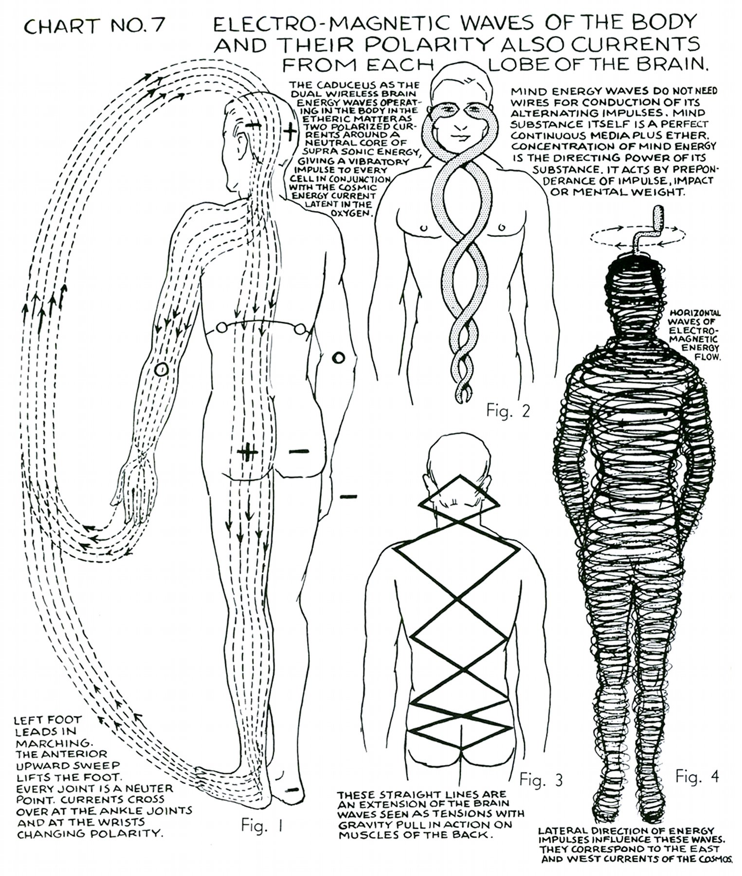 Plank Shoulder Taps besides Stock Illustration Exercising Neck Bridge Prone Bodybuilding Target Muscles Marked Red Initial Final Steps Image66857047 in addition Hulk Coloring Pages in addition Vertical Body Shape as well Walk Cycles Angry Animator. on head lifts